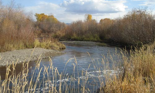 The East Gallatin River in autumn.