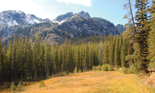 The Teanaway wilderness in Kittitas County.