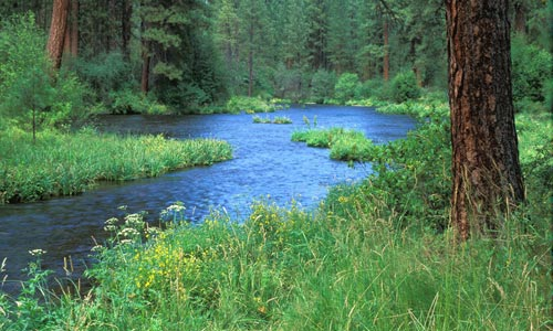 Oregon League of Conservation Voters Education Fund