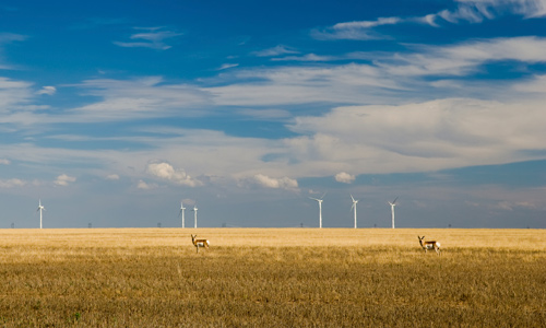 WELC is working with partners in Montana and Idaho to ensure renewable energy transmission is done wisely.